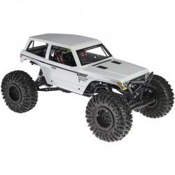 AX90045 1/10 Wraith Spawn...